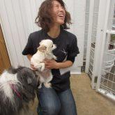 コーちゃん、こんにちわ~(●^o^●) 看板犬のベールさんは、コーちゃんが気になるみたいだよ~☆ そして、ランランにはピレニーズのはなちゃん、まる…