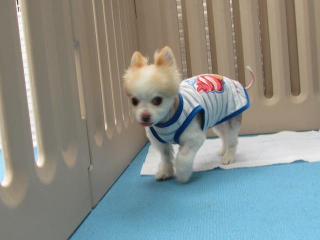 ホテル☆グッドモ―ニン~グヽ(^o^)丿