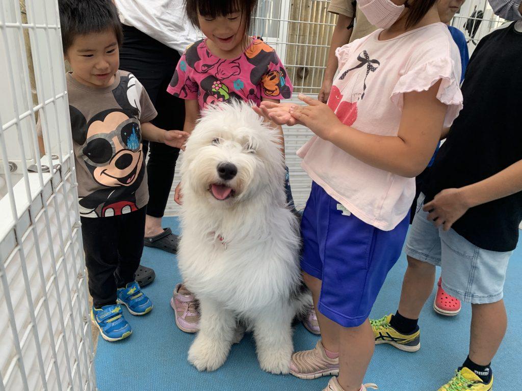 ★7月12日(日)12周年祭開催のお知らせ★